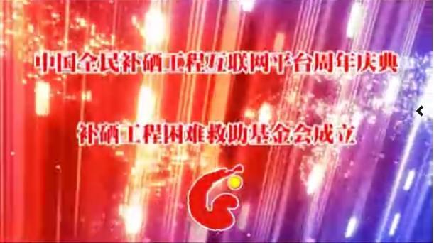 中国全民补硒工程互联网平台周年庆典上集